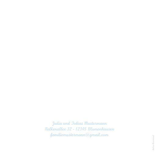 Geburtskarten Kleines pferdchen zartblau - Seite 2
