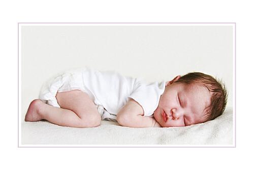 Geburtskarten Pferdchen 7 photos lavandel - Seite 2