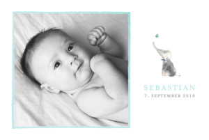 Geburtskarte Elefant 5 fotos blau