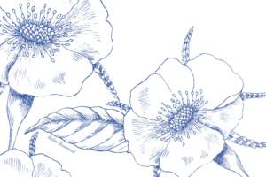 Antwortkarte Hochzeit Floralie blau
