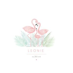 Geburtskarte Flamingo weiß