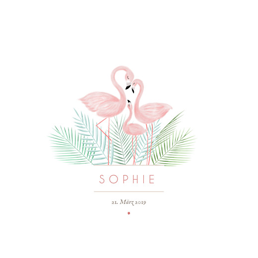 Geburtskarte Flamingo 2 fotos weiß