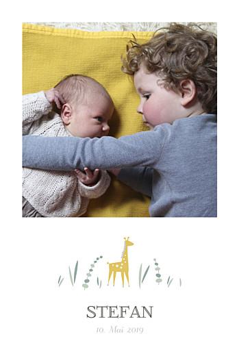 Geburtskarte Giraffe 4 fotos hoch weiß