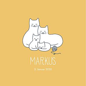 Geburtskarten gelb vier kleine katzen gelb
