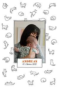 Geburtskarten weiß kätzchen weiß