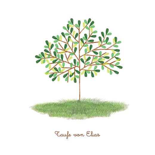 Taufeinladungen Baum grün