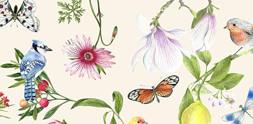 Platzkarte Naturalis weiß - Seite 2