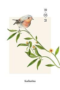 Geburtskarten orange naturalis hoch rotkehlchen