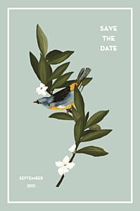 Save-the-date karten ohne foto bahia blau
