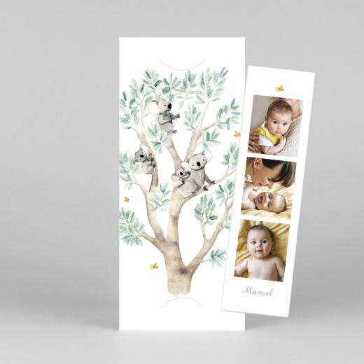 Geburtskarten 4 koalas (fotostreifen) weiß - Ansicht 1