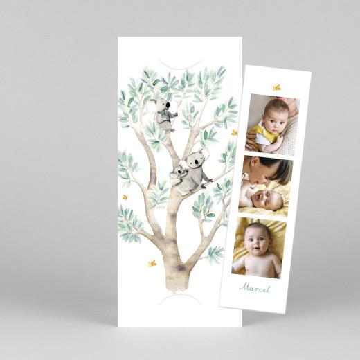 Geburtskarten 3 koalas (fotostreifen) weiß - Ansicht 1