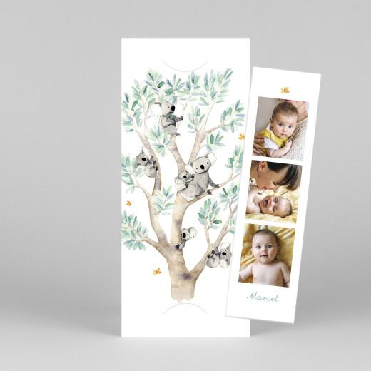 Geburtskarten 6 koalas (fotostreifen) weiß - Ansicht 1