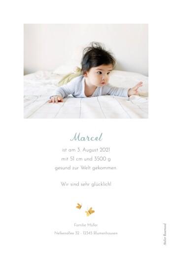 Geburtskarten 4 koalas weiß - Seite 2