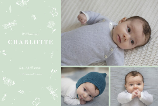 Geburtskarten Eleganter schmetterling (3 fotos) grün