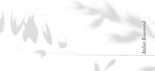 Anhänger Hochzeit Meereswind ährchen - Seite 2