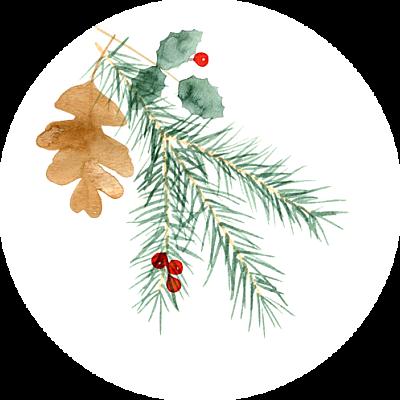 Aufkleber Weihnachten Blumen aquarell winter weiß finition