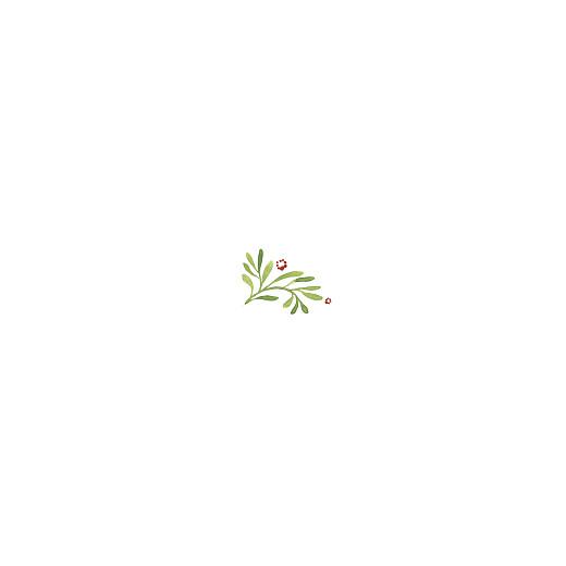Weihnachtskarten geschäftlich Waldgeflüster grün - Seite 2