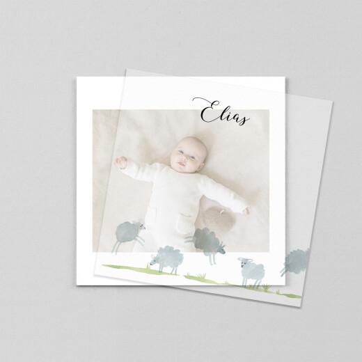 Geburtskarten Schäfchen (transparentpapier) weiß - Ansicht 1