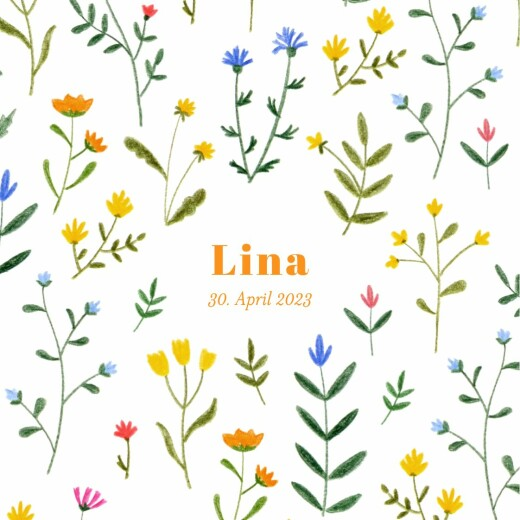Geburtskarten Wildblumenwiese (leporello) weiß