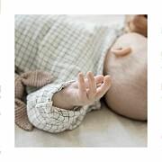 Geburtskarten Wildblumenwiese (leporello) weiß seite 2