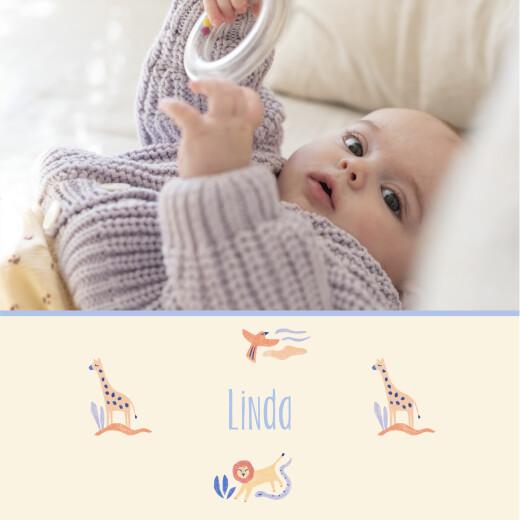 Geburtskarten Wüstentiere (klappkarte) beige